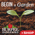 Burpee Gardening